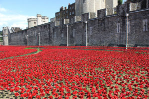Ceramic Poppies at the Tower of London