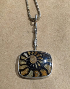Fossilized Ammonite with Hemetite
