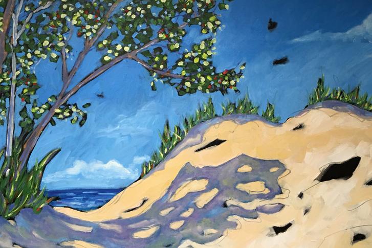 Christi Dreese Dune Series