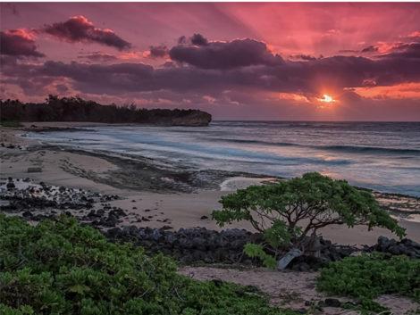 South-Shore-Sunrise-(C2C-Web)